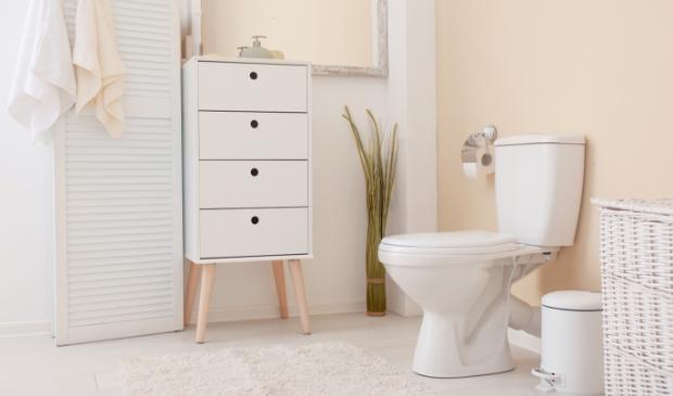 <p>Wist je dat je het toilet heel leuk kunt stylen? &nbsp;</p>
