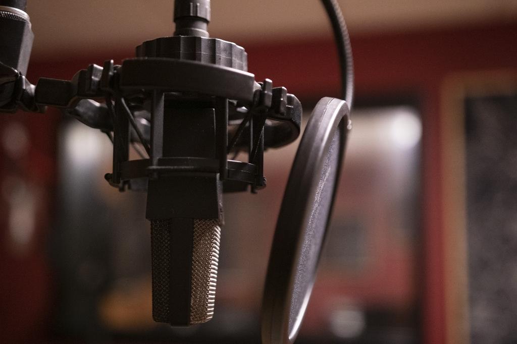 Is de microfoon je vriend? (Foto: aangeleverd) © rodi