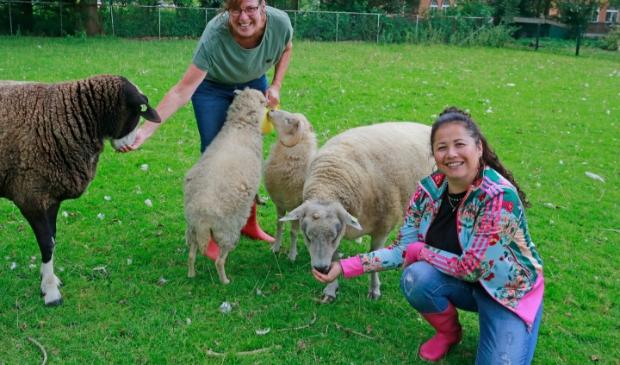 <p>Marijke (links) en Alice zijn al jaren vrijwilliger bij Kinderboerderij de Beestenboel.</p>