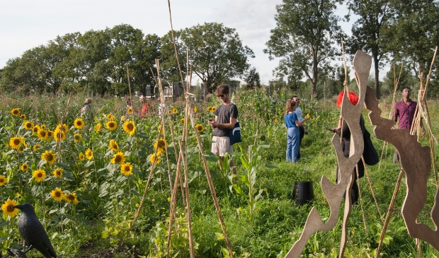 <p>Het Four Sisters labyrinth bestaat uit mais, bonen, pompoenen en zonnebloemen.</p>