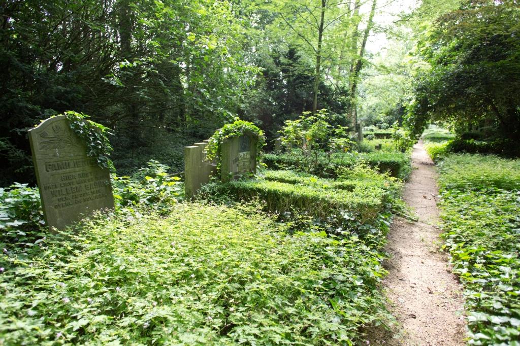 """<p pstyle=""""TUSSENKOP"""">Begraafplaats Huis te Vraag. (Foto: Stadsarchief) © rodi"""