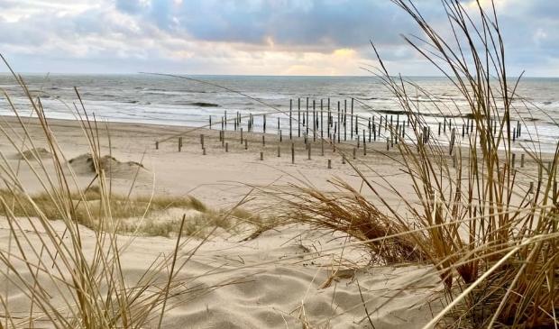 Het strand van Petten