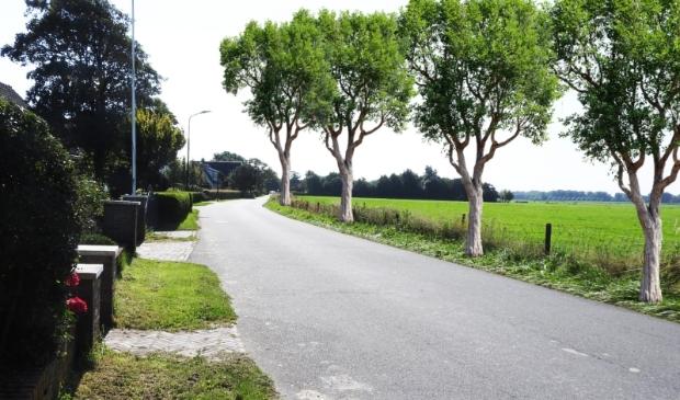<p>Ziet de Westerweg in Limmen er zo uit in de toekomst?&nbsp;</p>