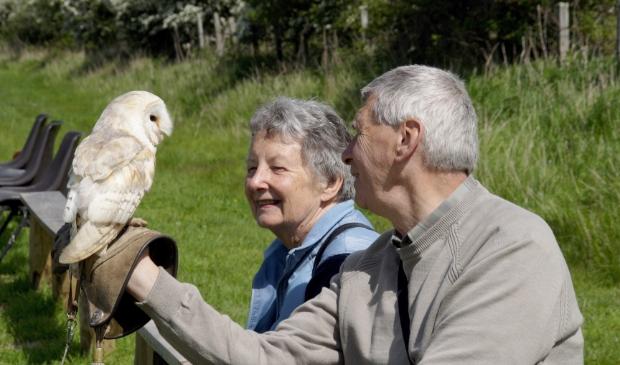 <p>E&eacute;n van meest bijzondere activiteiten in het WSIB-boekje is de uilenshow.</p>
