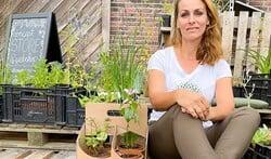 Green up the city: startup met verfrissende plantconcepten
