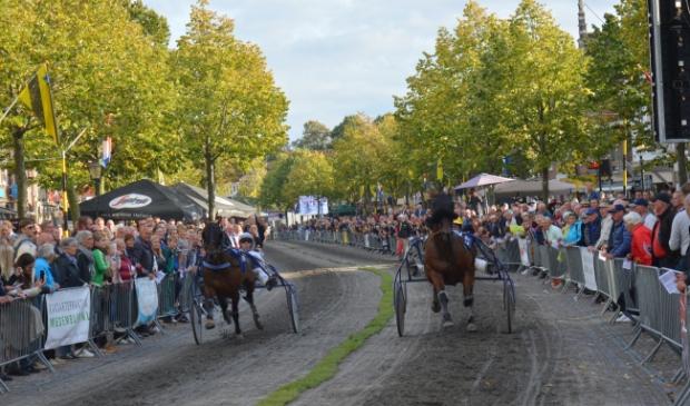 <p>De paarden draven over de Nieuwstraat in Medemblik.</p>