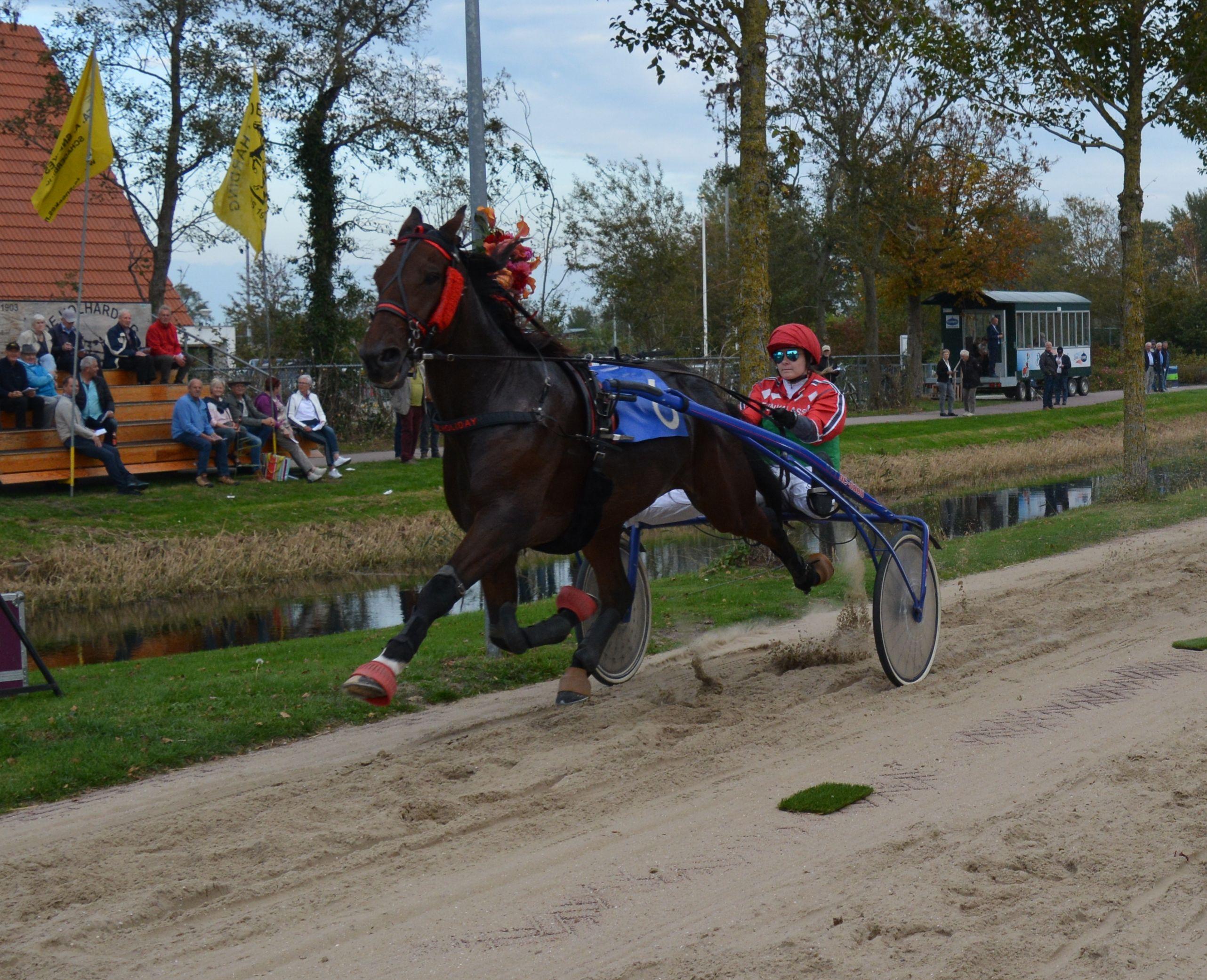 Doc Holiday is de grote winnaar van het klassement 'Paard van het jaar'. (Foto: Mathieu Hilgersom)