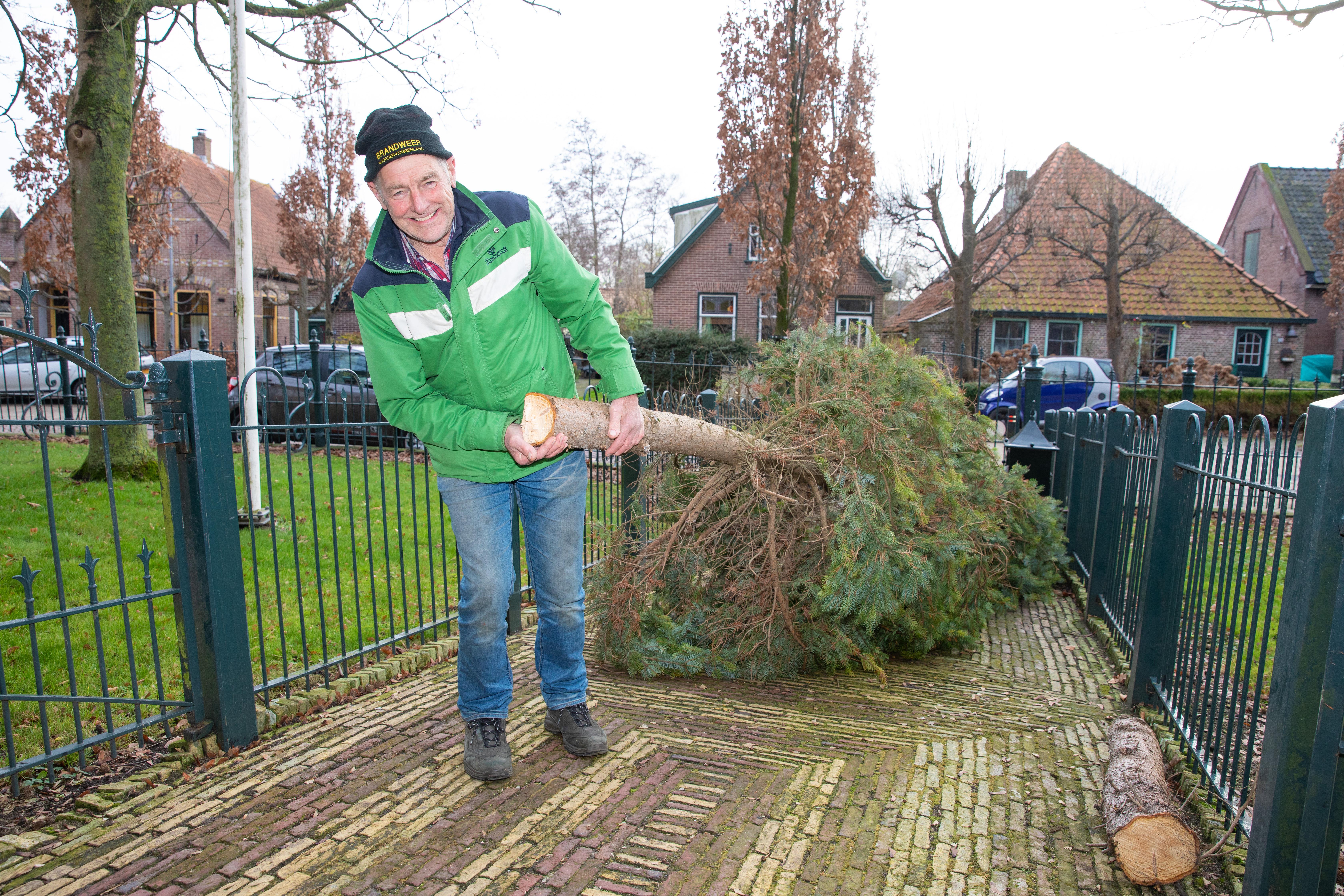 Cees Vlaar sleept de kerstboom naar de kerk: 'Een pittige klus.' (Foto: Vincent de Vries / Rodi Media)