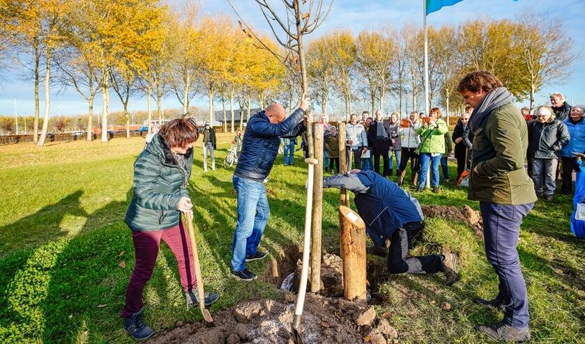 Onder grote belangstelling werd de eerste boom geplant.