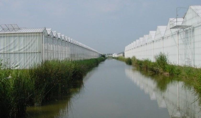 Delfland werkt - samen met de branche - aan schoon en gezond water in sloten, vaarten, kanalen en plassen.