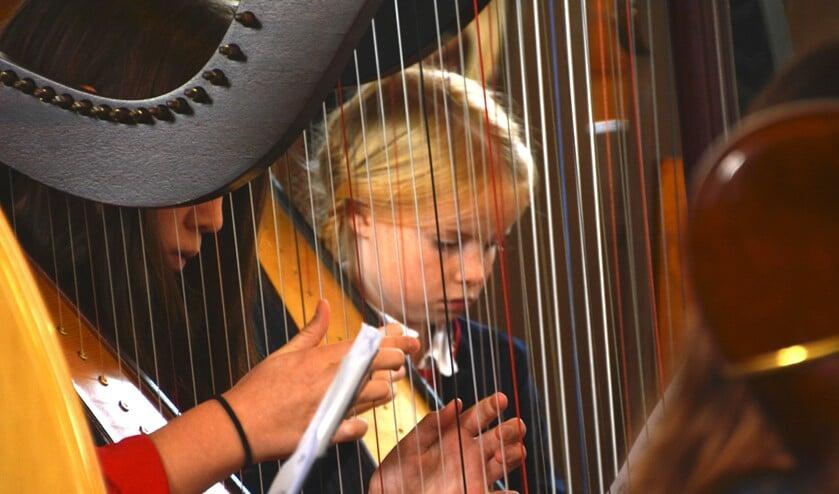 De harpdocente vertelt over de werking van het instrument en hierna leest zij een muziekverhaal voor uit haar boek 'de avonturen van Harpie Harrie en Oktavia Harpopus'.