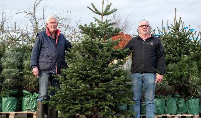 De kerstbomenverkoop bij Hagestein en Roskam gaat vrijdag van start!
