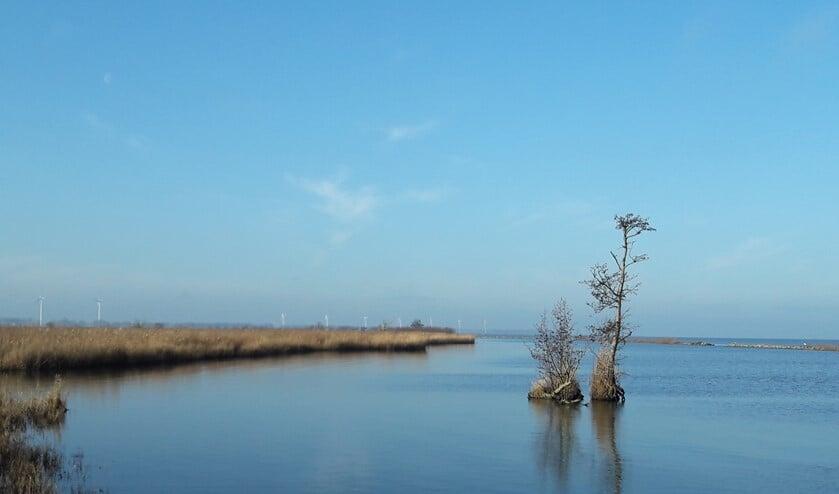 Zicht vanaf Tiengemeten. Aan de horizon Goeree Overflakkee.