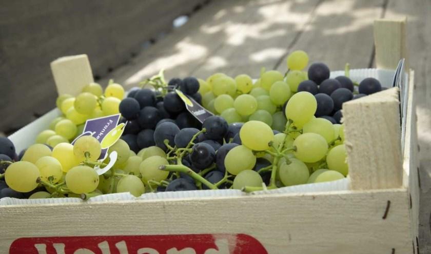 Vrijdag 28 juni wordt bij Themapark De Westlandse Druif het druivenseizoen 2019 geopend. Foto: (PR)