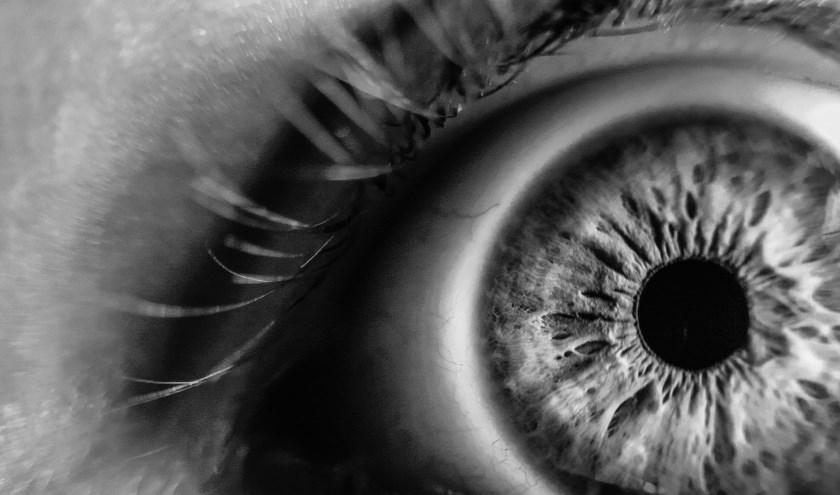 Alle mensen die te maken krijgen met verminderd zicht: blinden, slechtzienden, ouderen, maar ook professionals en hobbyisten die behoefte hebben aan beeldvergroting kunnen terecht bij Iris Huys.
