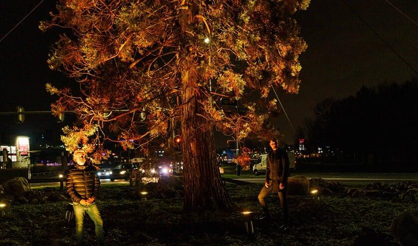 <p>Tijdens Orange the World werd de sequoia in het oranje licht gezet.&nbsp;</p>