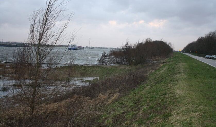 <p>Waterschap Hollandse Delta onderhoudt 776 kilometer groene dijken en duinen. </p>