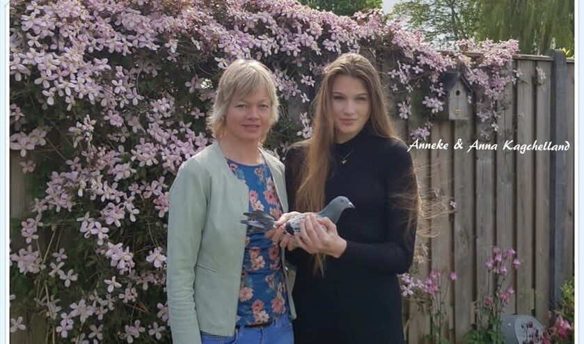 <p>In Dirksland werd de eerste duif, &nbsp;de NL20-7024289, gemeld door Anneke & Anna Kagchelland. De snelheid was 1236 meter per minuut!.</p>
