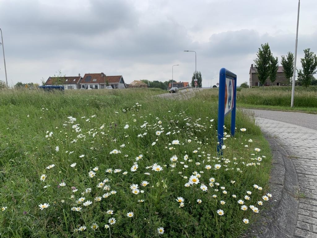Ecologisch beheer  © GrootNissewaard.nl