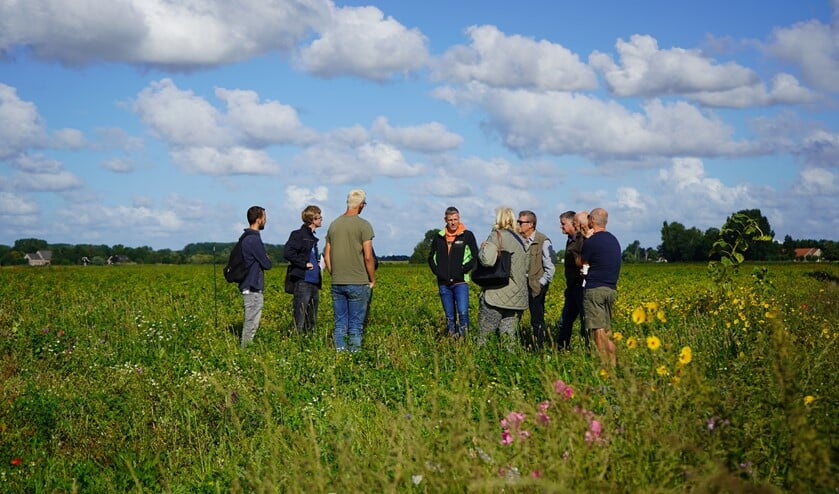 <p>Bij een rondje langs de proefveldjes worden ervaringen uitgewisseld. In de Hoeksewaard is het collectief van boeren al 20 jaar bezig met de aanleg van groene akkerranden. Een derde van de boeren doet daar al mee. &nbsp;</p>