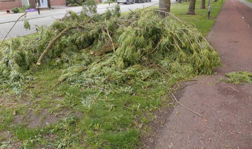 Vooral dinsdag veel wind en mogelijk windschade.