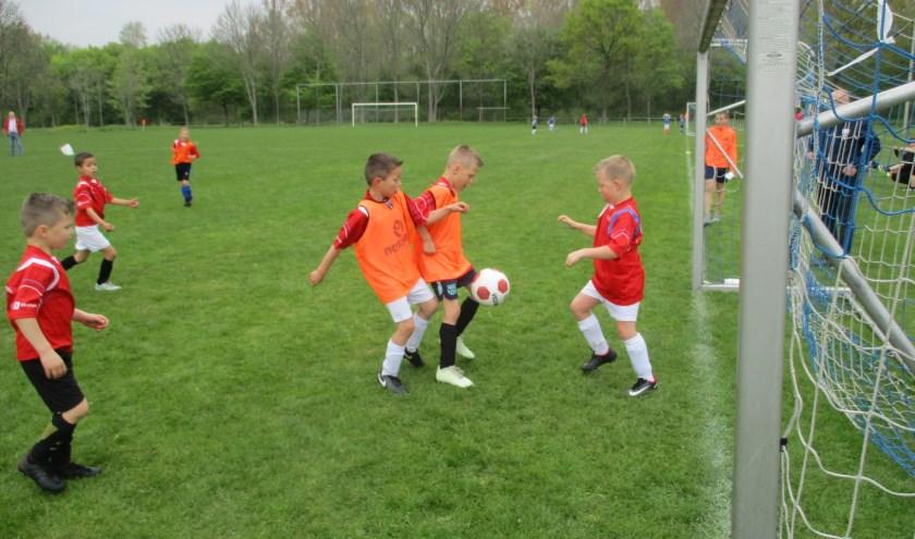 Buurtsportcoaches stimuleren jong en oud om te sporten.