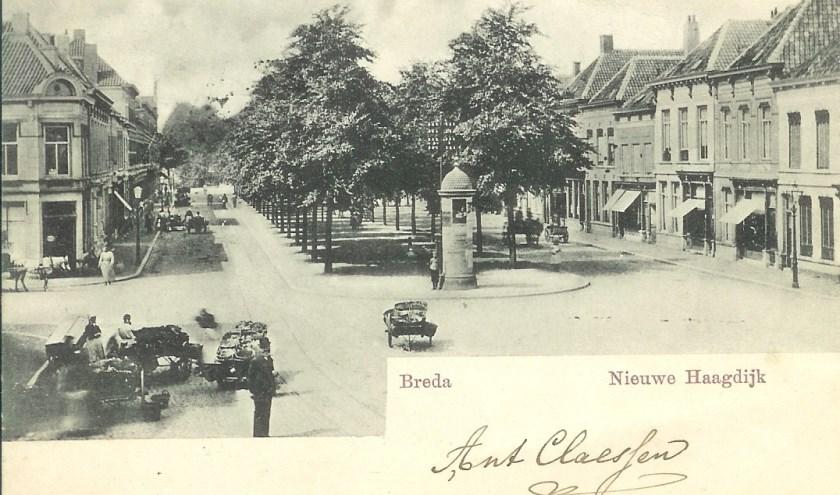 De Nieuwe Haagdijk.