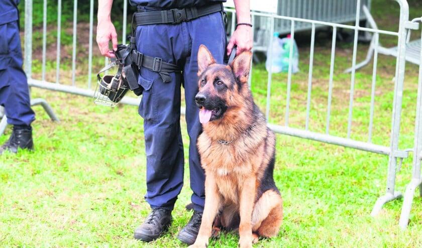 politiehond