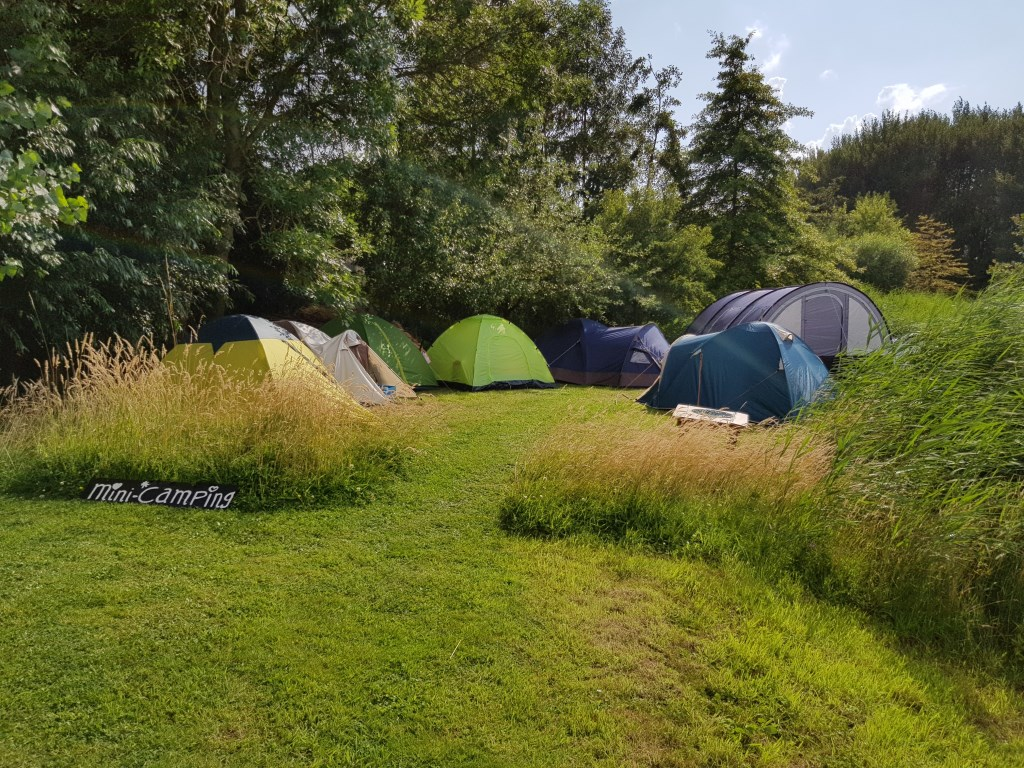 Wie wilde, kon blijven slapen op de mini-camping. Foto: Marjanne Dijkstra © Internetbode