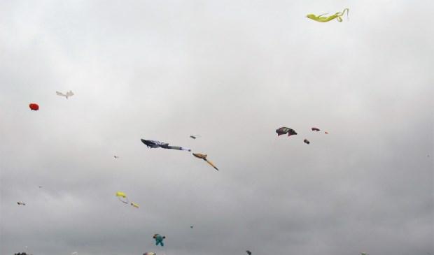 De stevige wind zorgde voor goed vliegerweer.  Foto: Charles Luijten © Internetbode