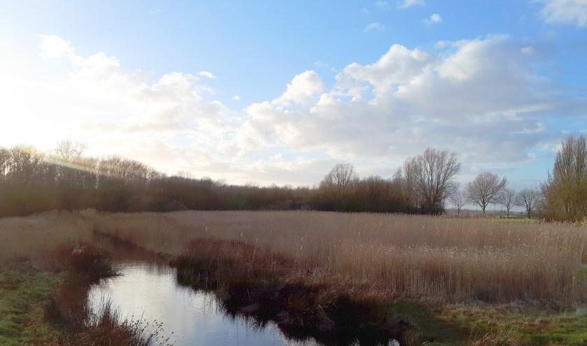Het Nollebos en Westduingebied langs de Vlissingse kust.