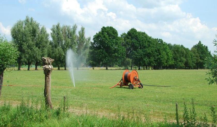 Bewateren tijdens de droogte