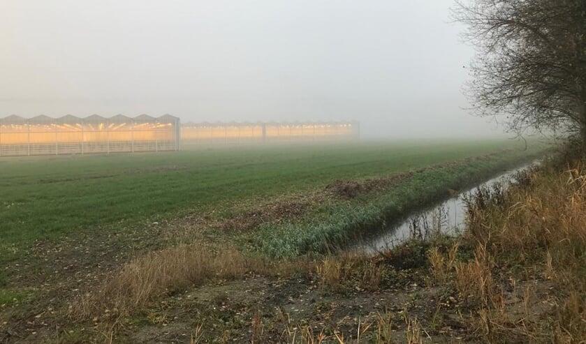 Het kassengebied in de Bathpolder bij Rilland.