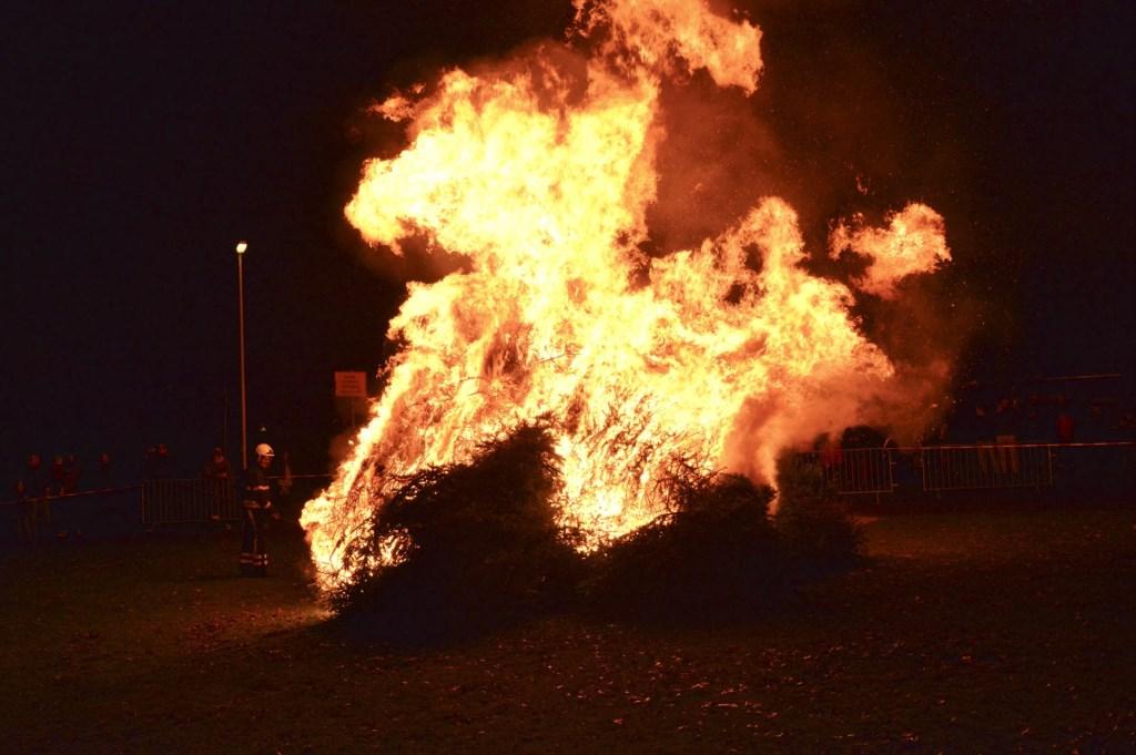 Om 18.30 uur werden de bomen in brand gestoken.  Foto: PERRYROOVERSFOTOGRAFIE © BredaVandaag