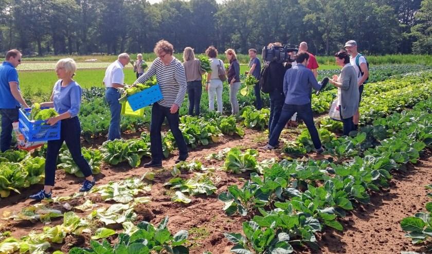 Deelnemers halen hun groenten op.