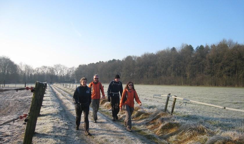 In de winter wandelen met Audax. Schitterend.