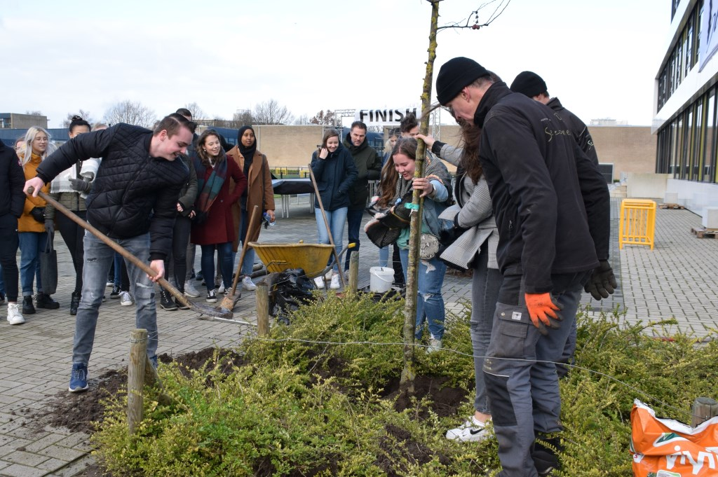 Havo 5 leerlingen planten bomen. FOTO STELLA MARIJNISSEN Foto: Stella Marijnissen © Internetbode