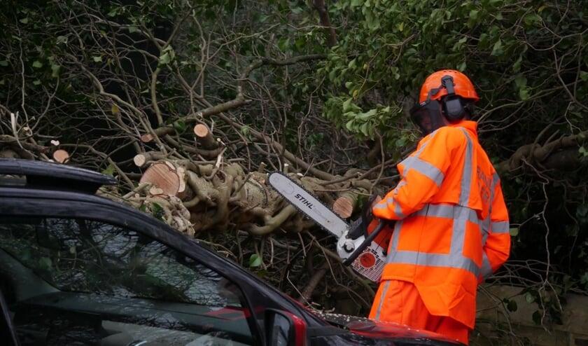 De brandweer heeft het druk door storm Dennis. Aan de Steijnstraat viel een boom op een auto.