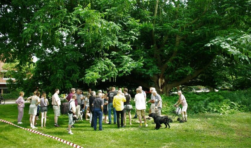 Delftenaren komen in actie als blijkt dat een monumentale boom in het Wilhelminapark dreigt te worden gekapt. Met succes. De gemeente besluit de boom voorlopig te sparen en meer onderzoek te doen.