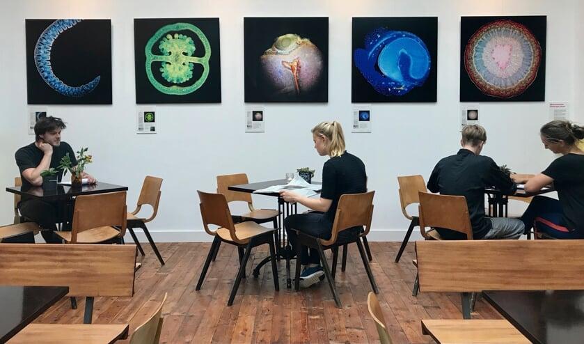 Microkunstwerken in De Salon