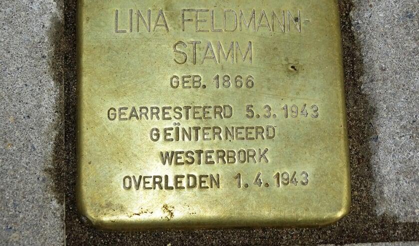 Aan de Rotterdamseweg ligt sinds 2019 een herinneringssteen voor één van de Delftse Joodse slachtoffers. (Foto: Ton de Ruiter, Stadsarchief Delft)