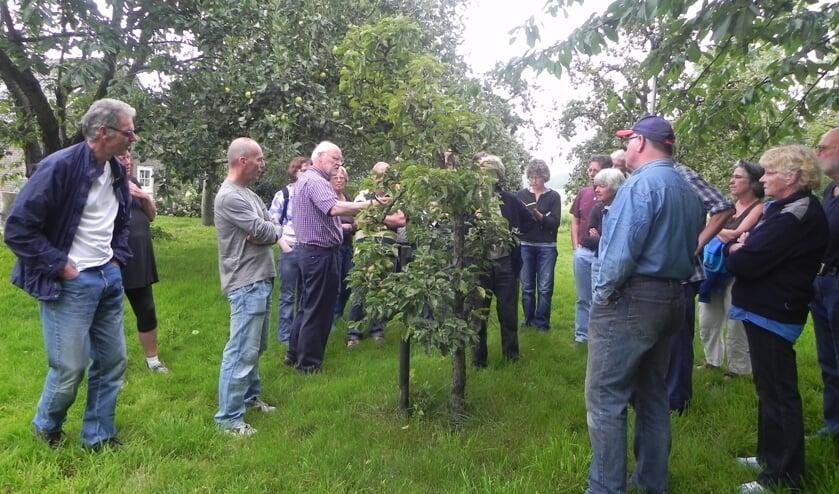 Aandachtige toehoorders tijdens de workshop snoeien in de boomgaard.
