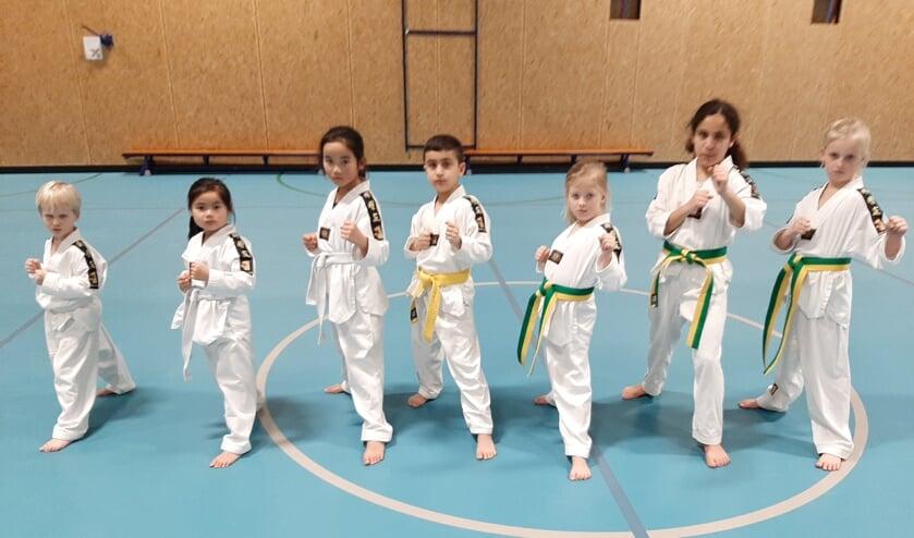 Taekwondo is voor alle leeftijden. Je kunt al jong beginnen. (Foto: PR)
