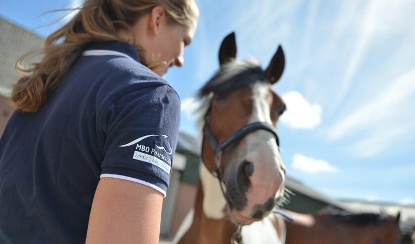 Beleef de open dag bij topsportbedrijf  Chardon in Den Hoorn. (foto: PR)
