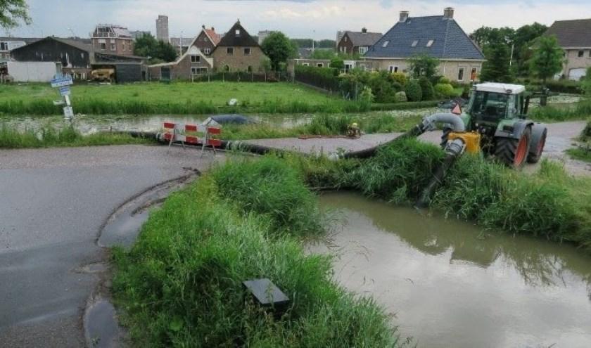 De actuele situatie aan de Lookwatering in Den Hoorn