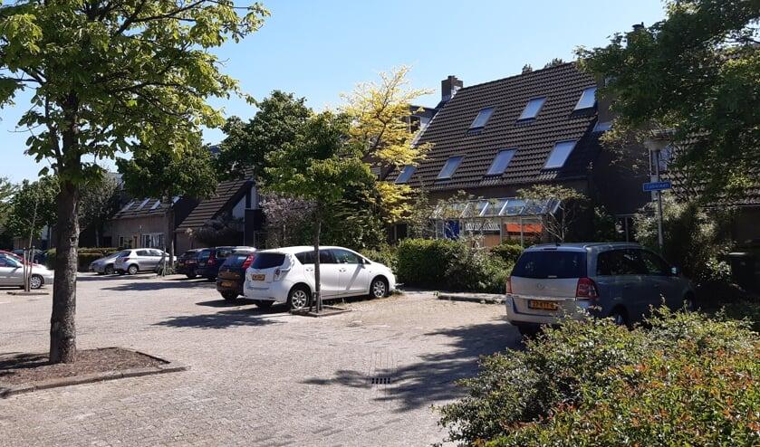 Studenten hebben onderzoek gedaan naar de openbare ruimte in Tanthof (Foto: Gerben Helleman)