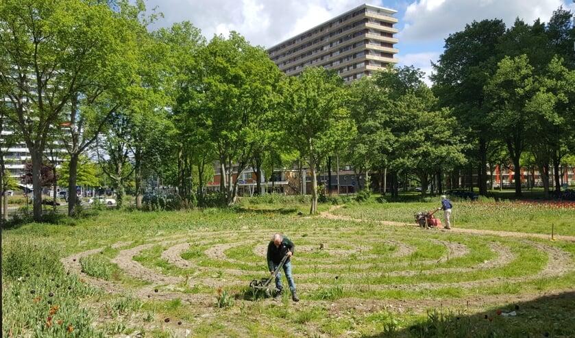 Het frezen van het veld en planten van de zonnebloempittenin Voorhof