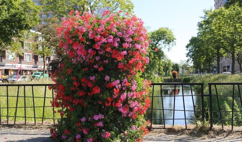<p>Een Flower Tower in Delft. (Foto: Jori Noordhoek)</p>