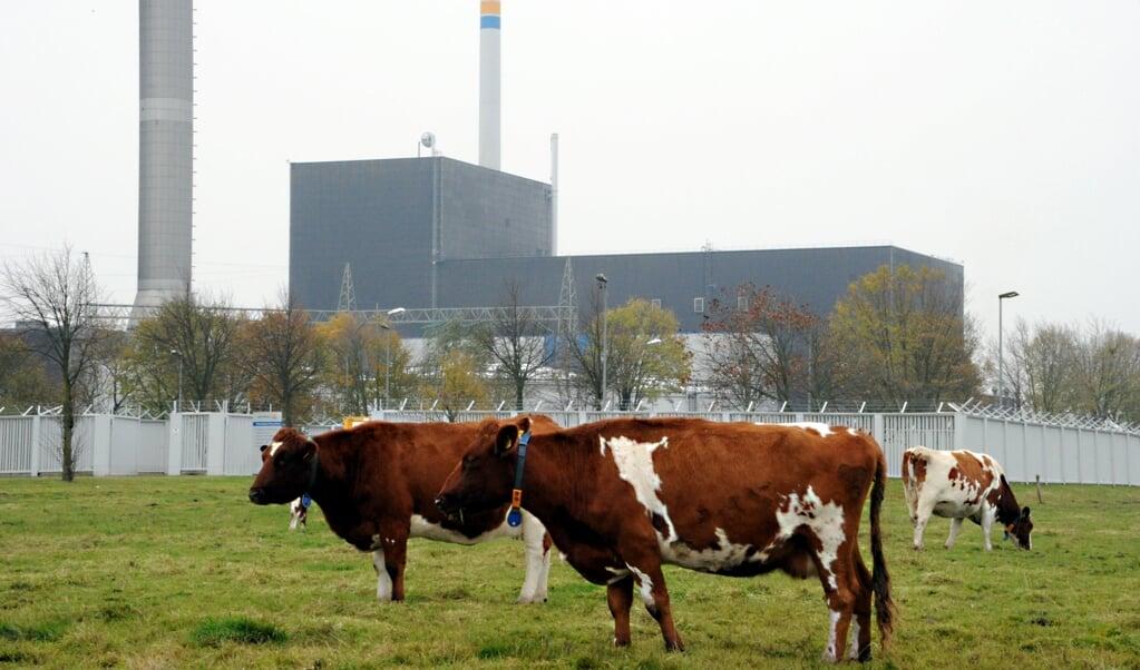<p>Atomkraftv&aelig;rket i Brunsb&uuml;ttel skal sammen med de to &oslash;vrige i Slesvig-Holsten rives ned.</p>  ( Carsten Rehder/dpa.)
