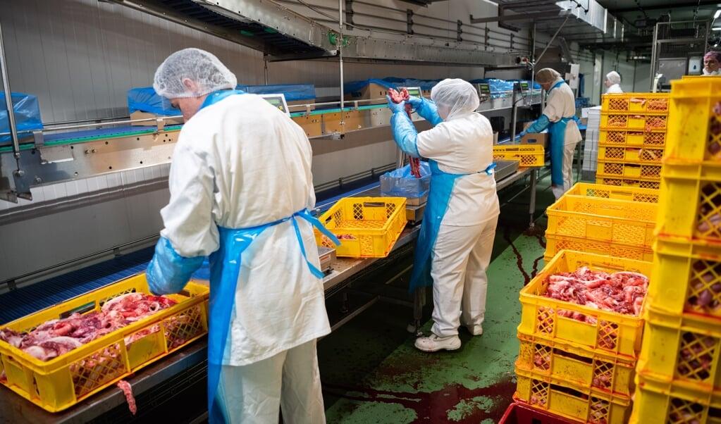 Schärfere Regeln für die Fleischbranche im Umgang mit Mitarbeitern haben zu neuen Tarifverhandlungen geführt, die ins Stocken geraten sind. Im Norden sind auch Beschäftigte in den Fabriken in Satrup und Böklund betroffen.  ( Archivfoto: dpa)